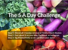 5-a-day-challenge
